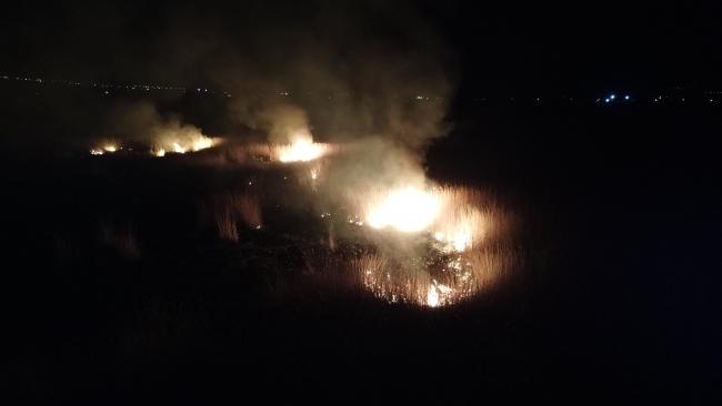 Erzincan'da koruma altındaki Ekşisu Sazlık Alanı'nda yangın