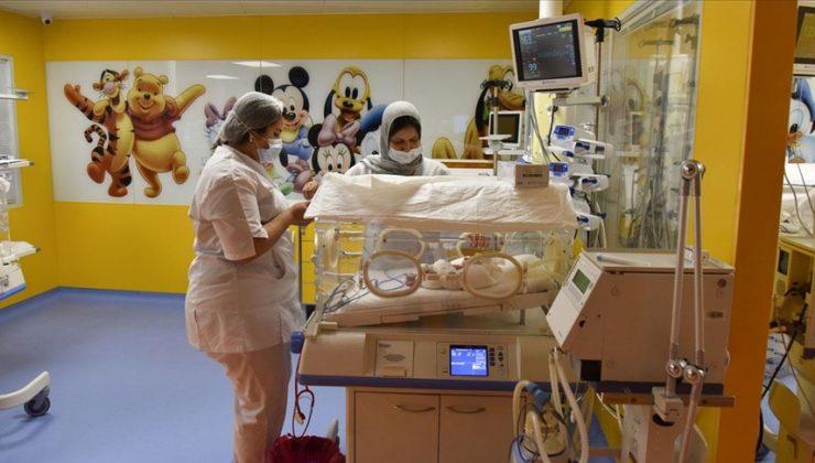 Fas'ta dünyaya gelen dokuzların sağlık durumları iyi