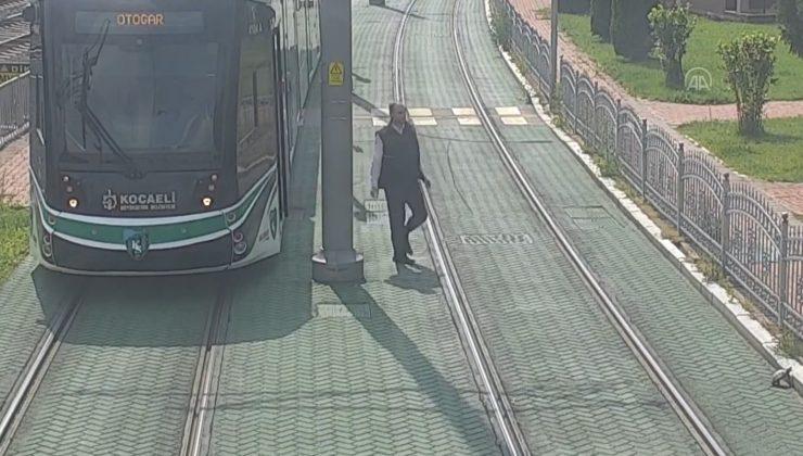 Tramvayı durduran vatman kaplumbağanın yardımına koştu