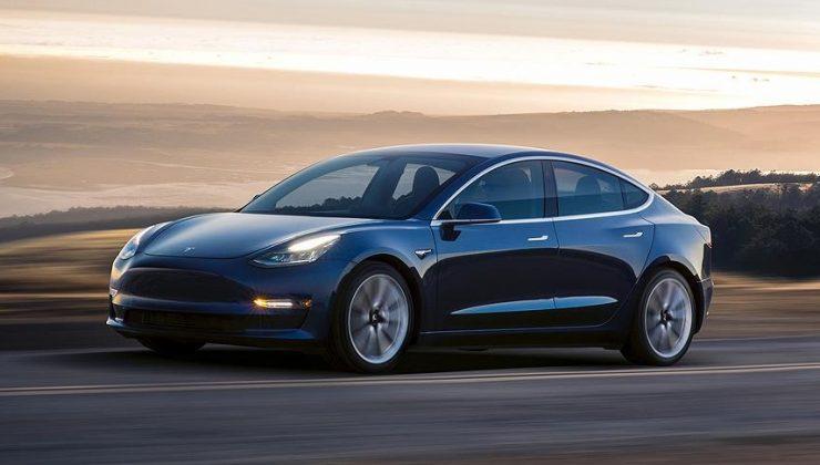 Tesla kullanıcılarının fare sorunu: Araçları yiyorlar
