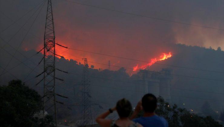 Milas yangını termik santrale kadar yaklaştı